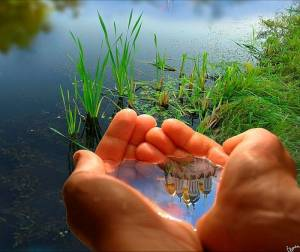 La vida, tus manos
